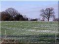 SJ9793 : Farmland in Winter by Stephen Burton