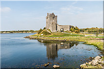 M3810 : Dunguaire Castle by Ian Capper