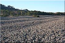 NJ3166 : Sea of Stones by Anne Burgess