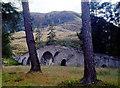 NO1890 : Sròn a' Bhruic over Invercauld Bridge by Alan Reid