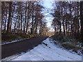 NJ6302 : Minor road towards Campfield by Stanley Howe