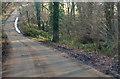 TQ4844 : Rectory Lane near Dyehurst Bridge by Julian P Guffogg