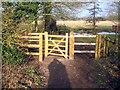 SU8983 : Maidenhead: Henry Bridges Fearon Memorial Gate by Nigel Cox