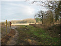 TG1522 : Footpath to Holt Road (B1149) by Evelyn Simak