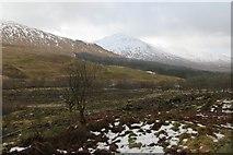 NN0550 : Glen Creran by Richard Webb