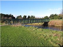 J3731 : Footbridge over the Tullybranigan River in Islands Park by Eric Jones