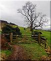 SE4598 : Field Entrance by Scott Robinson