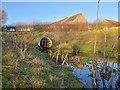 TF6421 : Land drain by Martin Pearman