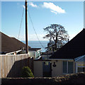 SX9474 : A glimpse of the sea past Orchard Cottage, 21 Alta Vista Close, Dawlish by Robin Stott
