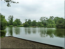 TQ0481 : Little Britain Lake by Robin Webster