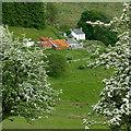 SN8056 : Nantyrhwch in Cwm Tywi, Powys by Roger  Kidd