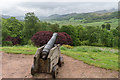 SD1096 : Cannon in Garden, Muncaster Castle, Cumbria by Christine Matthews