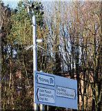 J3371 : Traffic-monitoring cameras, Stranmillis, Belfast (January 2015) by Albert Bridge