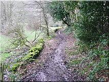 SE0722 : Hollas Lane by Humphrey Bolton