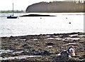 SN0106 : Riverside at Lawrenny by Deborah Tilley