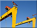 "J3575 : ""Samson"" and ""Goliath"", Belfast (January 2015) by Albert Bridge"