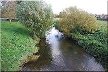 TG1508 : River Yare from Bawburgh Bridge by N Chadwick
