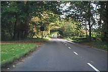 TG1607 : Watton Rd by N Chadwick