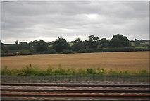 SK1409 : Farmland, Potter's Thatch by N Chadwick