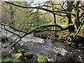 SX1567 : Warleggan River by Derek Harper