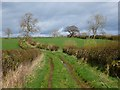 NY4440 : Byroad, Hesket by Andrew Smith