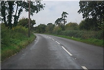 TG1407 : B1108, Watton Rd by N Chadwick