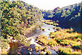 NT4532 : Downstream on River Tweed at Fairnielee by Ben Brooksbank