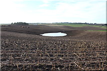 NX1057 : Farmland at Mahaar by Billy McCrorie