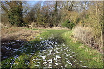 SU5894 : Junction on tracks beside the River Thame by Roger Templeman
