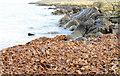 J4582 : Seaweed, Helen's Bay - February 2015(1) by Albert Bridge