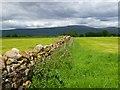 NY6229 : Farmland, Culgaith by Andrew Smith