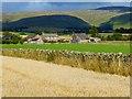 NY6231 : Farmland, Skirwith, Culgaith by Andrew Smith