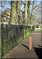 TL4757 : Railings at Vinery Road Rec by John Sutton
