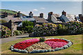 SN5881 : Floral display, Castle Grounds by Ian Capper