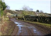 NU0012 : A mucky bridleway in Prendwick by Russel Wills