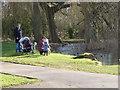 TF0919 : Feeding the ducks by Bob Harvey