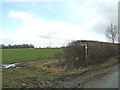 TM2088 : Winter cereal crop beside Hardwick Road by Adrian S Pye