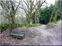 SE0722 : Drainage grid, Moor End Lane by Humphrey Bolton
