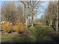 NZ2823 : Aycliffe Industrial Estate - landscaping alongside Durham Way North by Trevor Littlewood