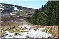 NT3128 : Hillside above Feuar's Moss by Jim Barton