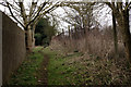 TQ0174 : Footpath at Wraysbury by Peter Trimming