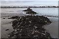 NO3026 : Kingston Breakwater by William Starkey