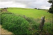 SE1028 : Fields by Cowling Lane by Derek Harper