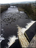 NY7063 : River South Tyne east of Alston Arches Viaduct by Andrew Curtis