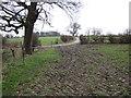SJ4452 : Footpath near The Wetreins by Jeff Buck