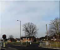 TL7206 : Sandford Road, Chelmsford by Adrian Cable
