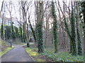 NZ2563 : Gateshead Riverside Park by Mike Quinn