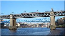 NZ2463 : Bridges on the Tyne (No.149) by Mike Quinn