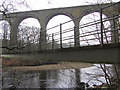 NY6758 : Lambley Viaduct from footbridge by Andrew Curtis