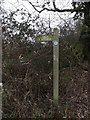 TL6003 : Footpath sign off Fingrith Hall Lane by Adrian Cable